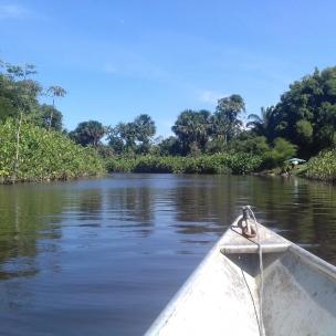 Rivière Acarouany